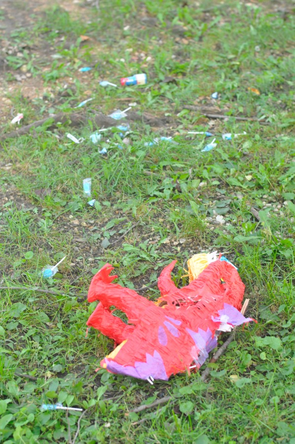 pinata on ground small